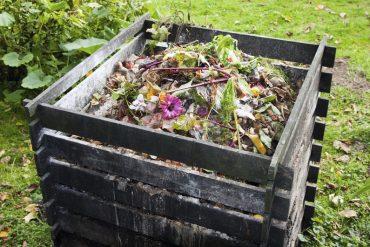 compost pour le jardin